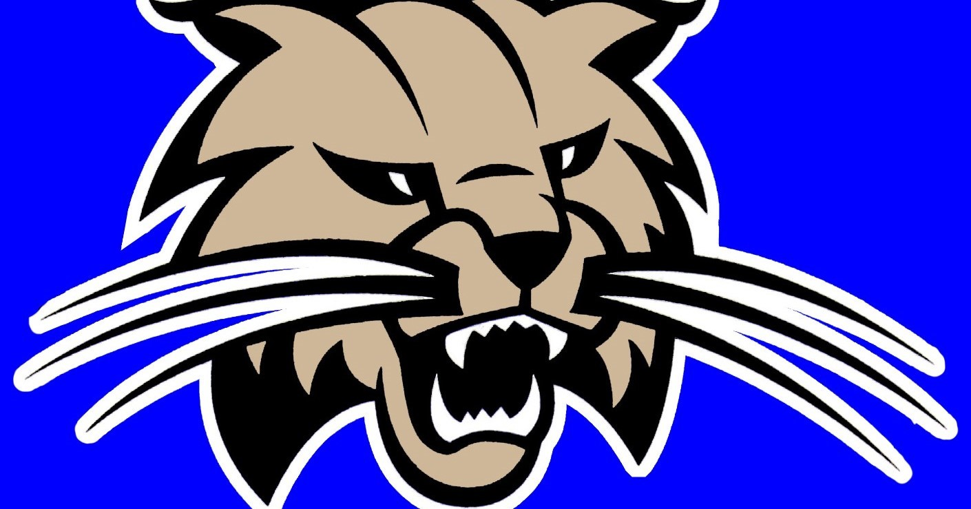 Attack Cat Logo on blue background