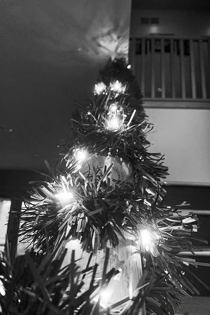 B&W Christmas tree with lights